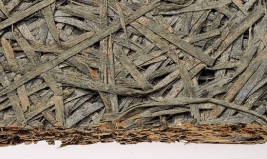 legno-moneralizzato